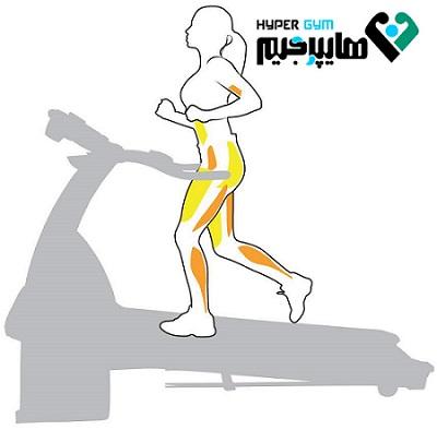 آيا كار با تردميل عضلات را از بين مي برد؟